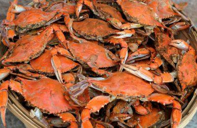 华盛顿特区吃螃蟹大法插图