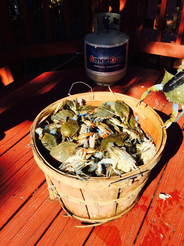 IMG_1359 (1) - 华盛顿特区吃螃蟹大法