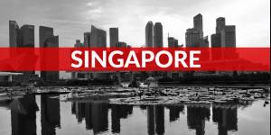 美国申请新加坡多次入境签证 —— F1/H1/绿卡插图