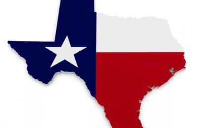 A week in Texas插图